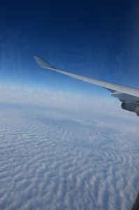 airplane wing 2