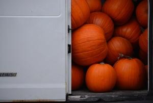 pumpkins truck