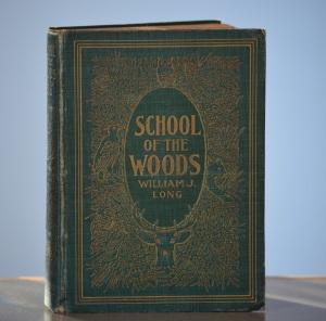 schoolofwoods - Copy